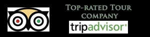 top rated tripadvisor