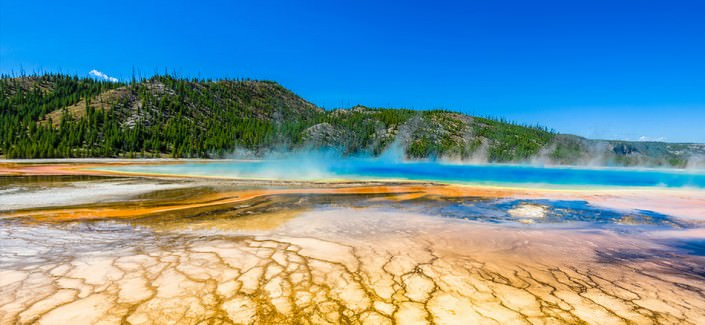 Tour Yellowstone