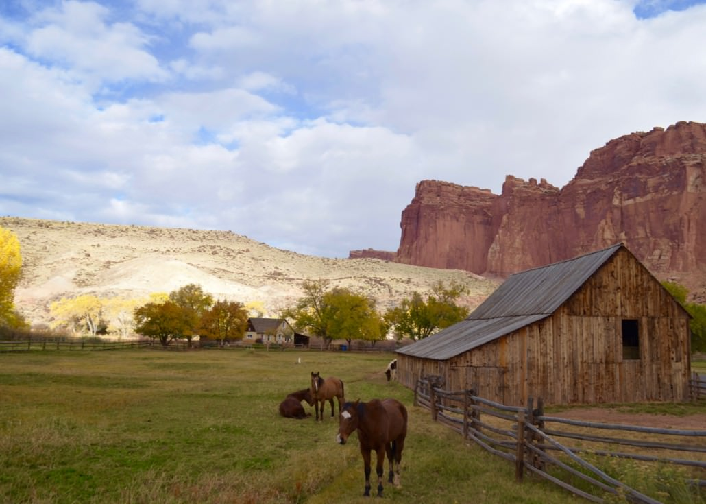 Gallery Page Utah Scenic Tours
