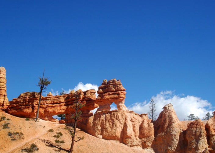 Visit Bryce Canyon National Park